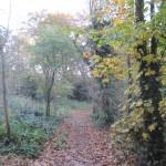 Totteridge_Green,_footpath_to_Coppice_Walk_2.jpg