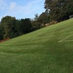 Grass Pitch 1040x642.jpg