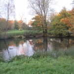Totteridge_Green,_Laurel_Farm_Pond.jpg
