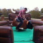 Rodeo Bull Hire.jpg