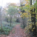 Totteridge_Green,_footpath_to_Coppice_Walk_2.jpg